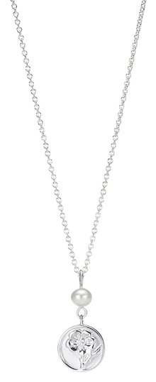 Preload https://img-static.tradesy.com/item/18370078/tiffany-and-co-silver-nature-rose-necklace-0-1-540-540.jpg