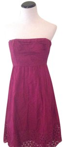 The Limited short dress Plum on Tradesy