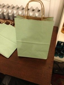 Sage Green 40 Paper Gift Bags