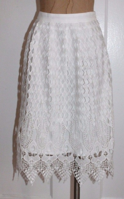 Jealous Tomato Lace Skirt WHITE Image 4