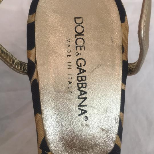 Dolce gabbaba Black and gold Formal