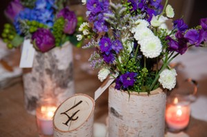 Rustic Birch Tree Table Numbers