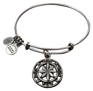 Alex and Ani Compass EWB- Rafaelian Silver Finish