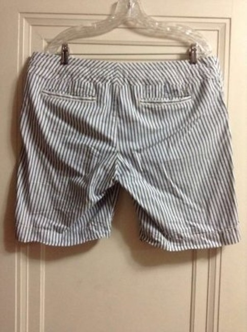 American Eagle Outfitters Stripes Striped Railroad Blue White Ae Shorts