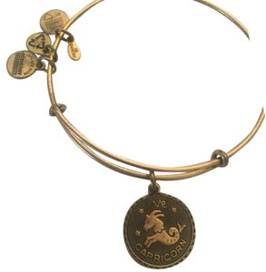 Alex and Ani Capricorn Charm Bangle