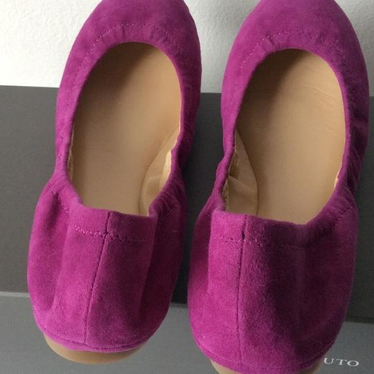 Vince Camuto New With Tags Berry Flats Image 2