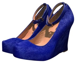 Ann Taylor Blue Wedges