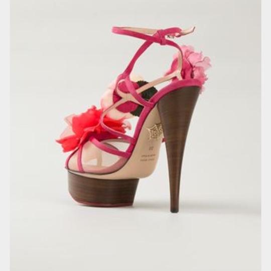 Charlotte Olympia Pink Sandals Image 1