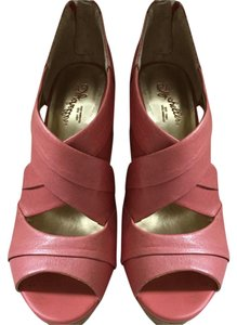 Seychelles Coral Wedges