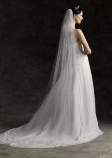 David's Bridal White Long Chapel Length with Pencil Edge Bridal Veil
