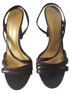 Coach Ciach Leather Strappy Brown Sandals