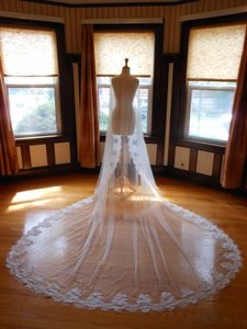 One Tier Cathedral Bridal Veil With Lace Applique Edge