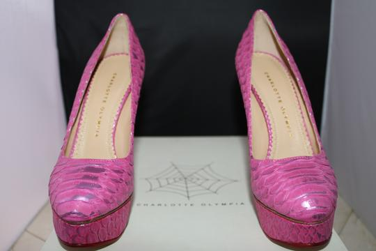 Charlotte Olympia Python Platform Exotic Luxury Pink Pumps