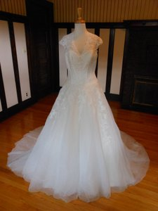 Pronovias Dakara Wedding Dress