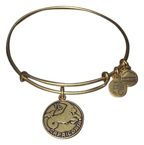 Alex and Ani Alex and Ani, Capricorn II, EWB, RG