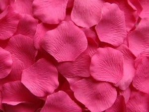 Hot Pink 5000x Silk Rose Petal More Color Available Centerpieces Aisle Runner