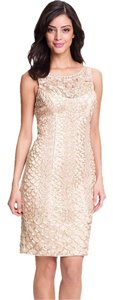Sue Wong Lace Embellished Dress