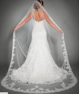 New Veil With Lace All Around