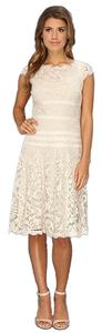 Adrianna Papell Illusion Lace Size 14w Dress