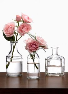 100 Glass Bud Vases