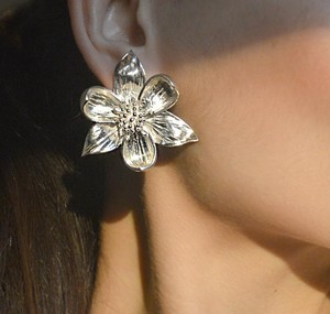 Tiffany & Co. Stunning Tiffany & Co Antique Rare Flower Earrings Sterling Silver