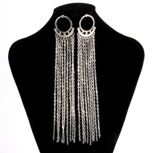 Silver Long Fringe Earrings