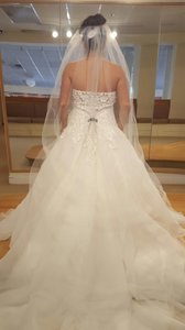 Stefan Jolie- Dropped Waist Ballgown Brand New Wedding Dress