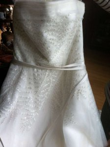 Ivory Organza Gown with Fern Embroidery and Net Overylay Wedding Dress Size 4 (S)