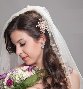 J.L. Johnson Bridals Rose Gold Embroidery Wedding Veil C452