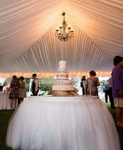 Tulle Tutu Table Skirt- 18'