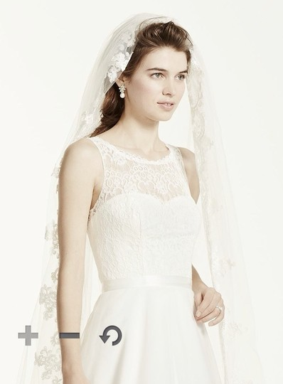 David's Bridal Lace Trim Cathedral Veil