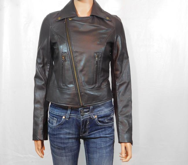 Isabella Lucca Brown Leather Jacket Image 1