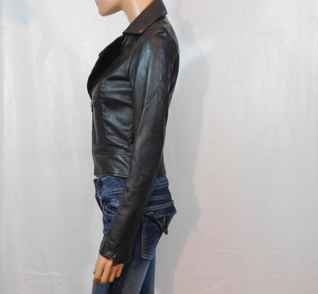 Isabella Lucca Brown Leather Jacket Image 4