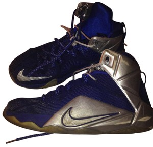 Lebron James Navy & Silver Athletic