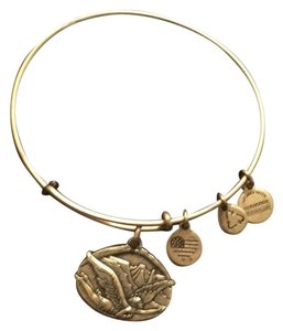 Alex and Ani Guardian Angel Bracelet