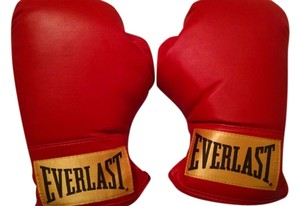 Everlast Boxing Gloves! Never Been Used!