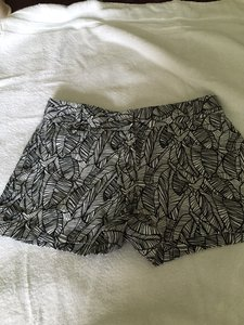 Ann Taylor LOFT Shorts Black & White