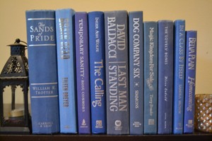 Vintage Style Books - Blue Sunrise & Silver R890 - Set Of 10