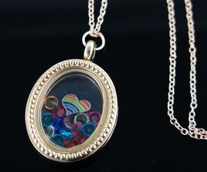Living Memory Oval Locket Necklace Free Shipping