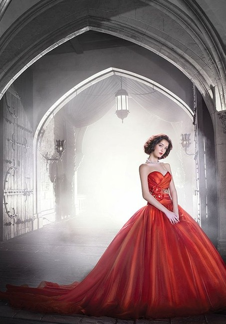 Item - Red Organza 250 Traditional Wedding Dress Size 6 (S)