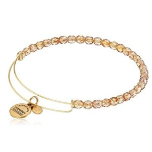 Alex and Ani Alex and Ani Discontinued Beaded Bangle