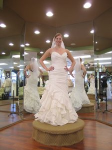 Demetrios Gr181 Wedding Dress