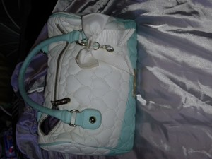 Betsey Johnson Chic Satchel in white/green