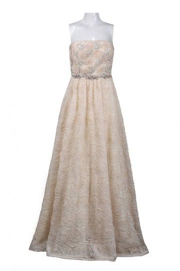 Adrianna Papell Blush Strapless Tulle Ball Gown Feminine Wedding Dress Size 12 (L) Image 2