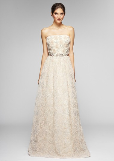 Adrianna Papell Blush Strapless Tulle Ball Gown Feminine Wedding Dress Size 12 (L) Image 4