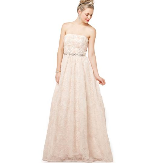 Adrianna Papell Blush Strapless Tulle Ball Gown Feminine Wedding Dress Size 12 (L) Image 7
