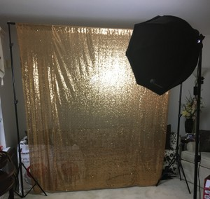 Complete Photobooth: Photobooth Stand With Softbox Light Kit And Gold Sequin Backdrop