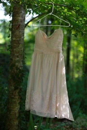 Ruche Deep Ivory Polyester/Tulle Addison Eve Casual Wedding Dress Size 8 (M)