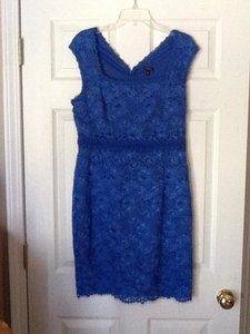 Ann Taylor Lace Dress