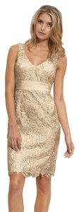 Adrianna Papell Sheath Lace Dress